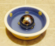 rsz_water_dish_with_portion_pacer