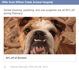 Dental_offer_WillowCreekAnimalHospital_throughout_February