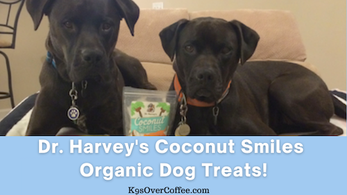 K9sOverCoffee | Dr. Harvey's Coconut Smiles Organic Dog Treats