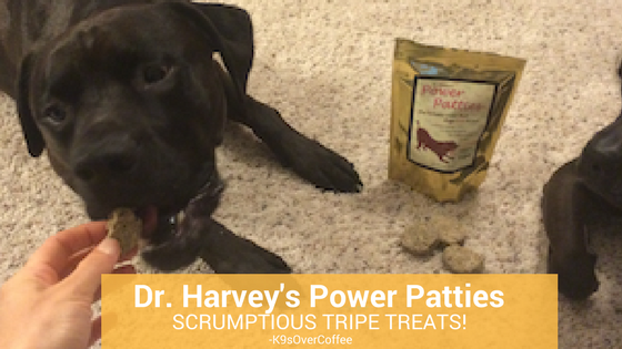 K9sOverCoffee | Dr. Harvey's Power Patties - Scrumptious Tripe Treats