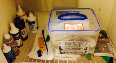 K9sOverCoffee |Our Dog First Aid Kit