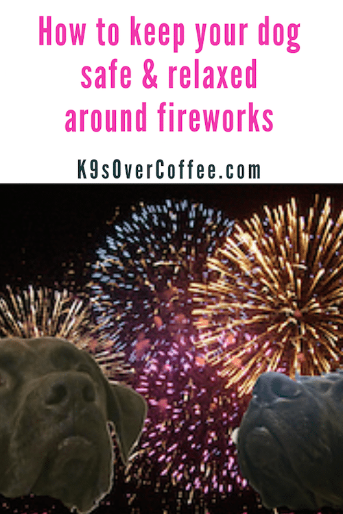K9sOverCoffee.com | How to keep your dog safe & relaxed around fireworks
