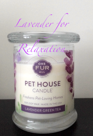 Pet House Lavender Candle