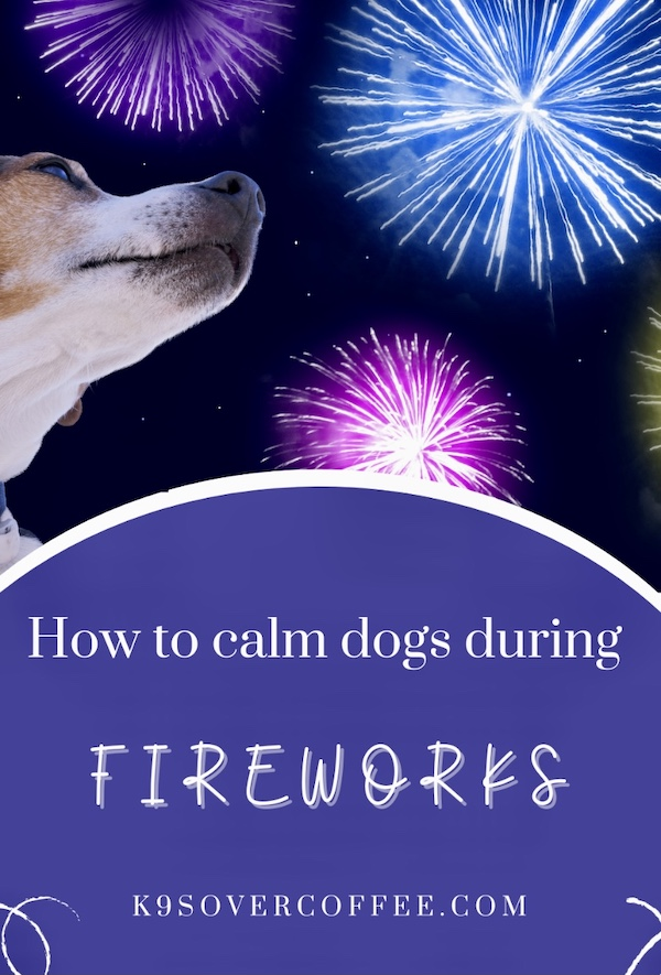 K9sOverCoffee.com | How to calm dogs during fireworks