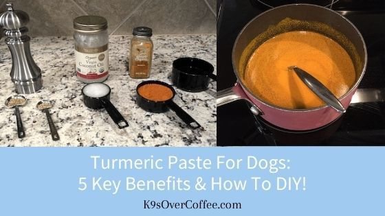 K9sOverCoffee | Turmeric paste for dogs: 5 key benefits & how to DIY