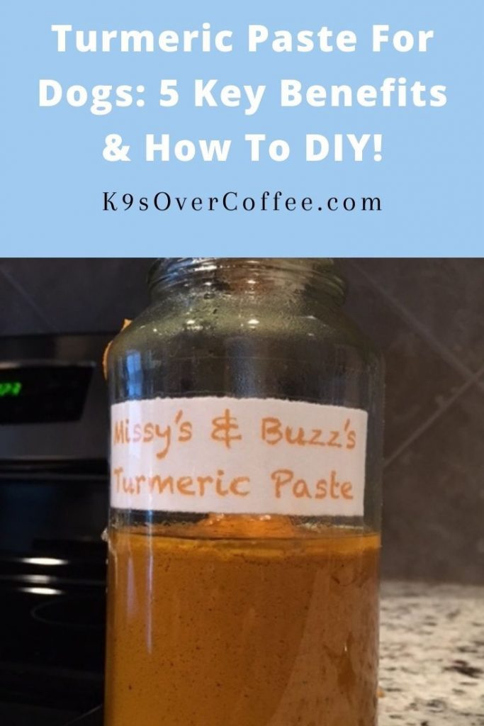 K9sOverCoffee.com | Turmeric paste for dogs: 5 key benefits & how to DIY