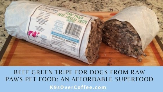 K9sOverCoffee | Beef Green Tripe for Dogs: An Affordable Superfood
