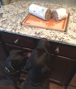 Missy & Buzz Ready to Eat the Raw Paws Pet Food Beef Green Tripe for Dogs
