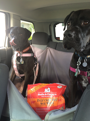 On The Road With #StellaandChewys Super Beef Meal Mixers
