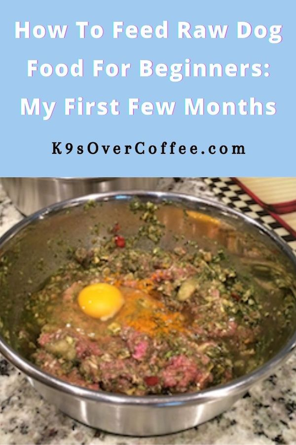 K9sOverCoffee.com | How to Feed Raw Dog Food for Beginners/ My First Few Months