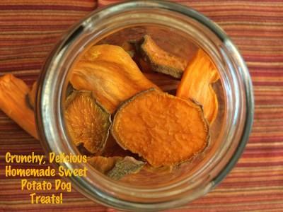 K9sOverCoffee | Crunchy, Delicious Homemade Sweet Potato Dog Treats