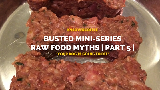 Busted Mini-Series, Raw Food Myths | Part 5 | %22Your Dog Is Going To Die%22
