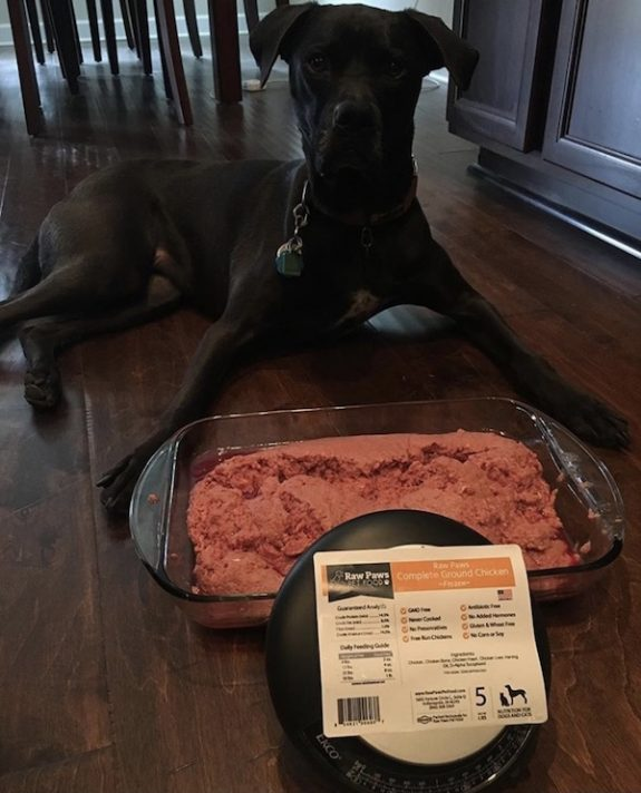 K9sOverCoffee.com | 5 lb of complete ground chicken from Raw Paws Pet Food