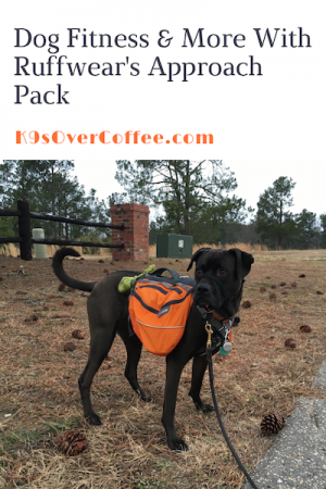 K9sOverCoffee.com | Dog Fitness & More With Ruffwear's Approach Pack