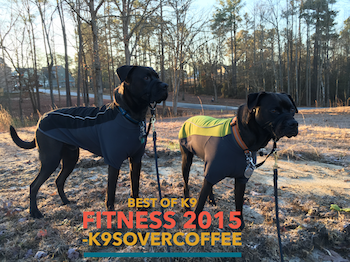 Best of K9 Fitness 2015