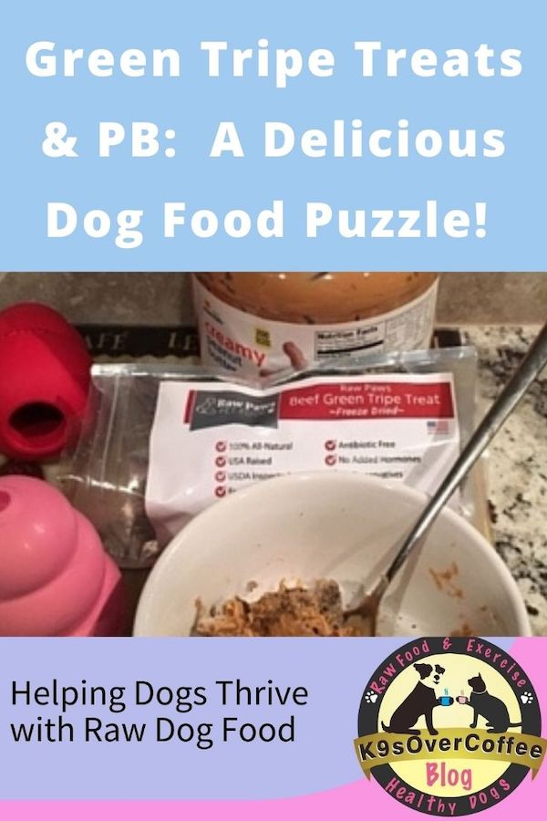 K9sOverCoffee.com | Green Tripe Treats & PB: A Delicious Dog Food Puzzle