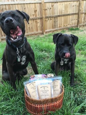 Missy & Buzz Anticipating Their Tukabear Treats