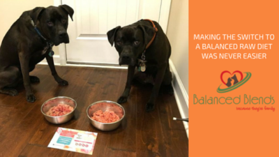 K9sOverCoffee | Making The Switch To A Balanced Raw Diet Was Never Easier. Balanced Blends - Because They're Family.