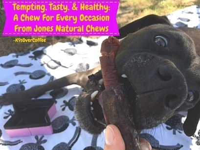 Tempting, Tasty, & Healthy - A Chew For Every Occasion From Jones Natural Chews