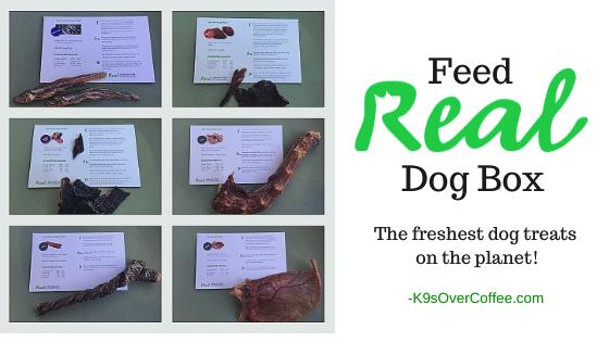 K9sOverCoffee.com | Feed Real Dog Box The freshest dog treats on the planet