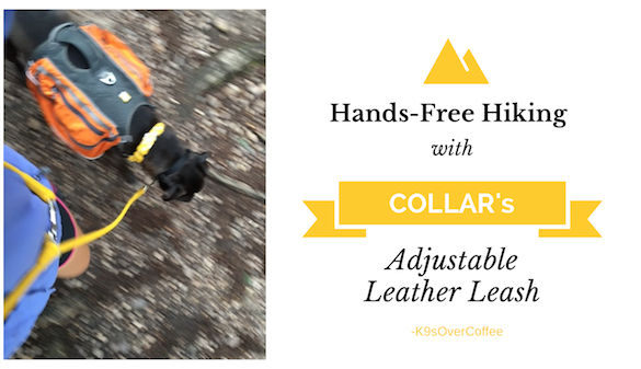 Hands-Free Hiking With COLLAR's Adjustable Leather Leash