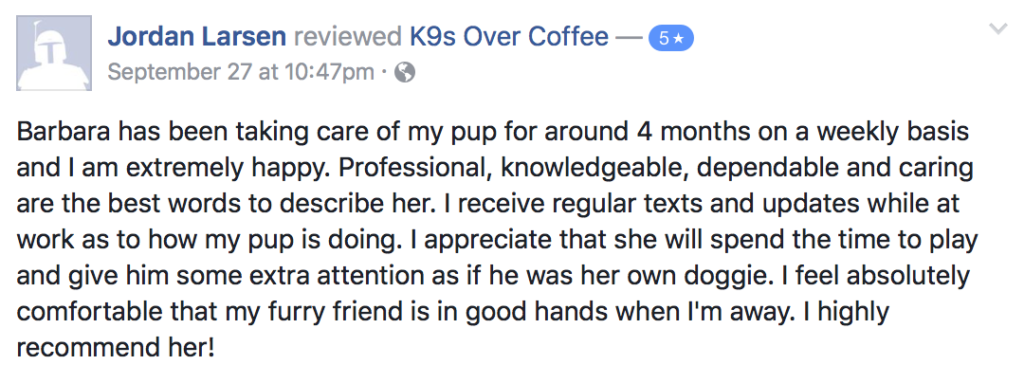 K9sOverCoffee Pet Services Review 10