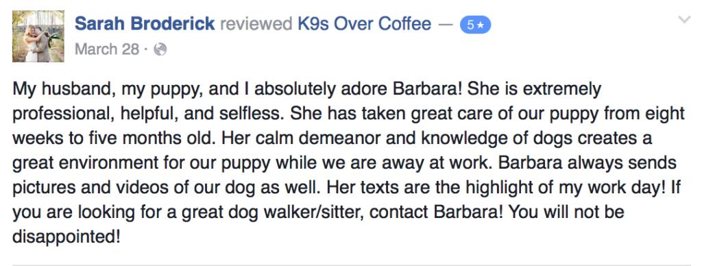 Pet Services Review 3