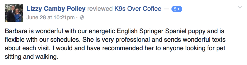 K9sOverCoffee Pet Services Review 8
