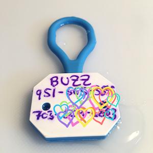 Buzz's Customized Twigo Pet ID Tag