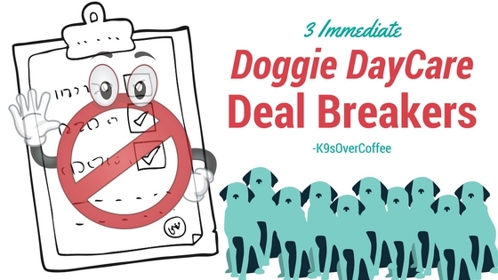 3 Immediate Doggie DayCare Deal Breakers