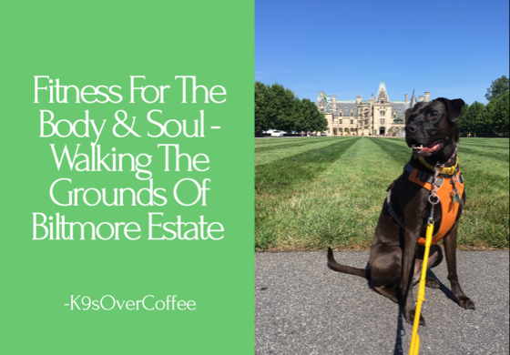 Fitness For The Body & Soul - Walking The Grounds Of Biltmore Estate