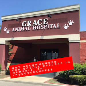 Grace Animal Hospital Not Recommended For Doggie DayCare in Memphis, TN