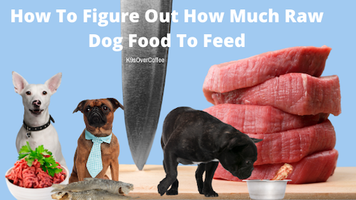 K9sOverCoffee | How To Figure Out How Much Raw Dog Food To Feed