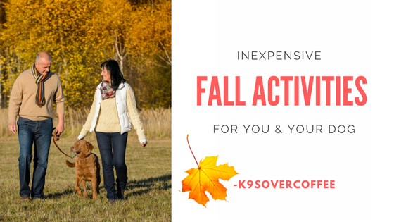 Inexpensive Fall Activities For You & Your Dog