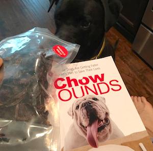 K9sOverCoffee | Reading Chow Hounds by Ernie Ward, DVM