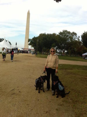 k9sovercoffee-walking-the-pups-at-the-mall-in-d-c
