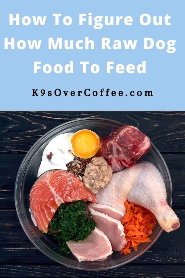K9sOverCoffee.com | How To Figure Out How Much Raw Dog Food To Feed