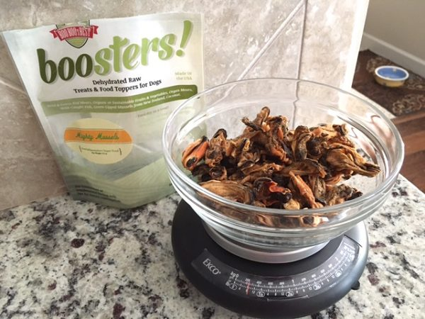8 Ounces Of Dehydrated Green Lipped Mussels From Boo Boo's Best.jpeg