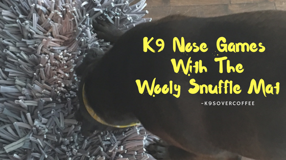 K9sOverCoffee | K9 Nose Games With The Wooly Snuffle Mat