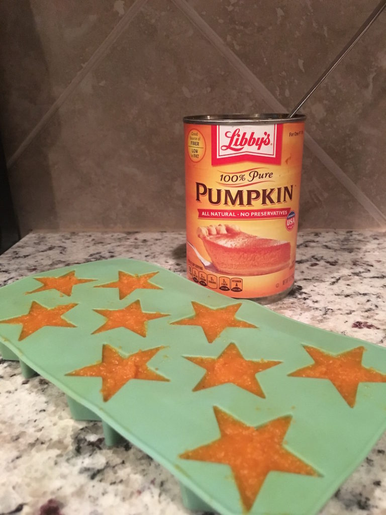 K9sOverCoffee Makes Frozen Stars With Pure Pumpkin Purée