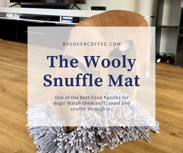 K9sOverCoffee.com | The Wooly Snuffle Mat is one of the best food puzzles for dogs