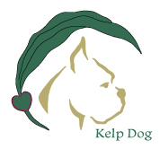 K9sOverCoffee Worked Together With Kelp Dog