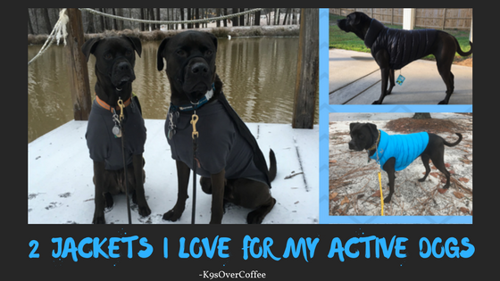 K9sOverCoffee | 2 Jackets I Love For My Active Dogs