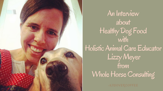 K9sOverCoffee | An Interview About Healthy Dog Food With Holisitc Animal Care Educator Lizzy Meyer From Whole Horse Consulting