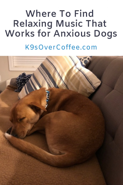 K9sOverCoffee.com | Where to find relaxing music that works for anxious dogs