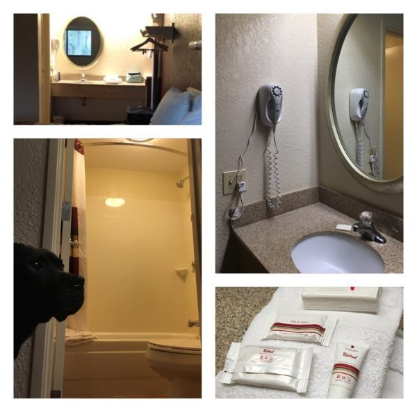Bathroom Features At The Red Roof Inn on Hilton Head Island
