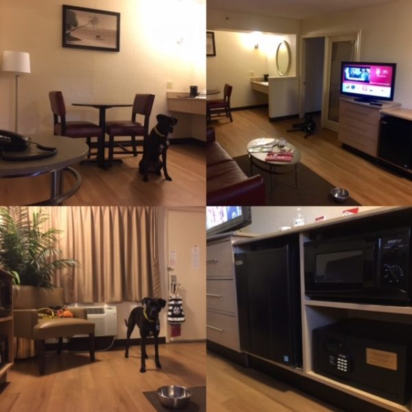 K9sOverCoffee | Winter Getaway to Hilton Head Island's Dog-Friendly Red Roof Inn - Dining Room-Living Room Area