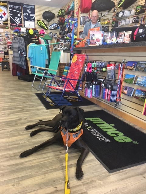 K9sOverCoffee | Winter Getaway to Hilton Head Island's Dog-Friendly Red Roof Inn - Missy At Dog-Friendly Store Player's World of Sports