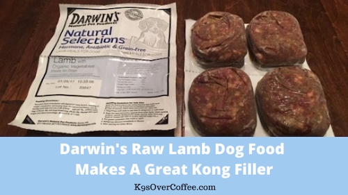 K9sOverCoffee | Darwin's raw lamb dog food makes a great Kong filler