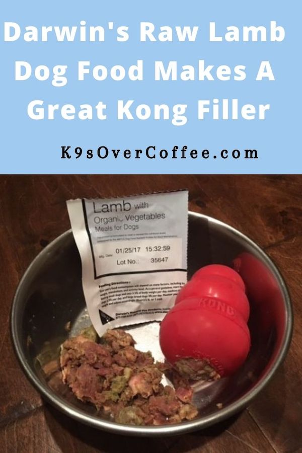 K9sOverCoffee.com | Darwin's Raw Lamb Dog Food Makes A Great Kong Filler